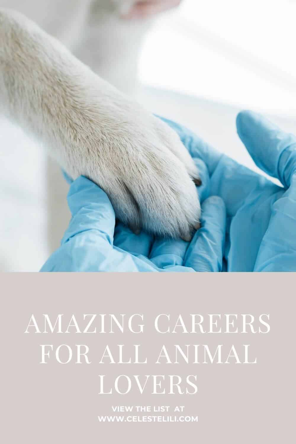 Amazing Careers for All Animal Lovers pin